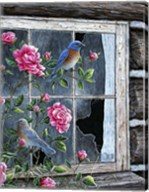 Roses & Bluebirds Fine-Art Print