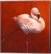 Flame Bird Flamingo Fine-Art Print