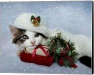 Christmas Kitten In The Snow Fine-Art Print