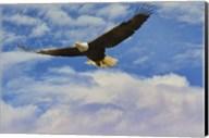 Fly High Bald Eagle Fine-Art Print