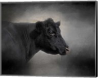 Portrait Of The Black Angus Fine-Art Print