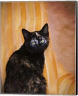 Royal Kitten Fine-Art Print