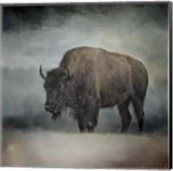 Stormy Day Buffalo Fine-Art Print