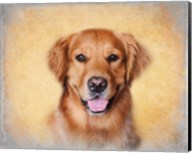Young Golden Retriever Portrait Fine-Art Print