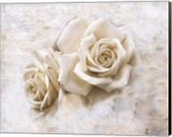 Vintage Rose 4 Fine-Art Print