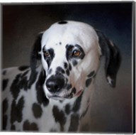 The Firemans Dog Dalmatian Fine-Art Print