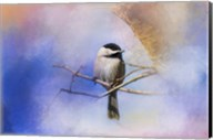 Winter Morning Chickadee Fine-Art Print