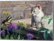 Kitten & Butterfly Fine-Art Print
