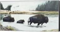 Spirit Of Yellowstone Fine-Art Print
