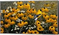 Summer Gold Fine-Art Print