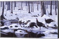 Hardwood Creek - Wild Turkeys Fine-Art Print