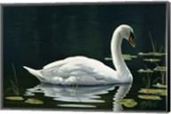 Stillwater Fine-Art Print