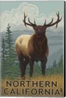 Northern California Fine-Art Print