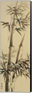 Bamboo Forever I Fine-Art Print