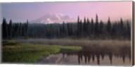 Mount Rainier National Park, Washington Fine-Art Print