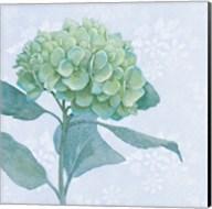 Blue Hydrangea I Fine-Art Print