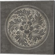Rosette II Gray Fine-Art Print