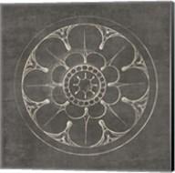 Rosette III Gray Fine-Art Print