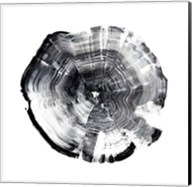 Tree Ring Abstract I Fine-Art Print