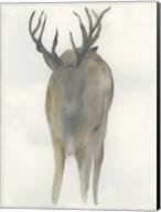 Solo Deer Fine-Art Print