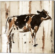 How Now Brown Cow Fine-Art Print