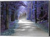 Violet Glow Fine-Art Print