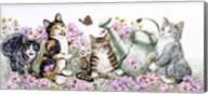 Flower Cats Fine-Art Print