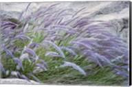 Purple Wild Grass II Fine-Art Print