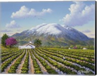 Mount St Helena Fine-Art Print
