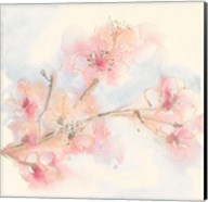 Pink Blossoms II Fine-Art Print