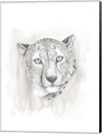 Big Cat Study I Fine-Art Print