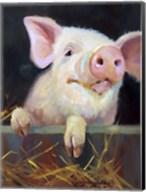 Farm Club II Fine-Art Print