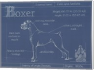 Blueprint Boxer Fine-Art Print
