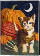 Calico Kitten & Pumpkins Fine-Art Print
