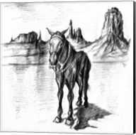 Lonely Mule Fine-Art Print