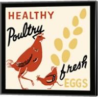 Healthy Poultry-Fresh Eggs Fine-Art Print