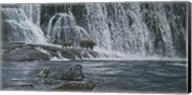 Grizzlies / Falls Fine-Art Print