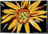 Sunflower Fine-Art Print