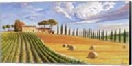 Colline Toscane Fine-Art Print