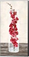 Arrangement of Orchids Fine-Art Print