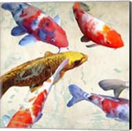 Koi I Fine-Art Print
