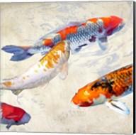 Koi II Fine-Art Print