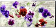 Field of Pansies Fine-Art Print