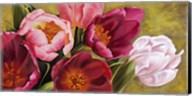 My Tulips Fine-Art Print