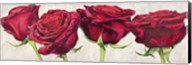 Rose Romantiche Fine-Art Print