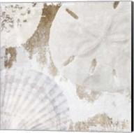 White Shells I Fine-Art Print