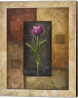Violet Tulip Fine-Art Print