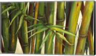 Bamboo on Beige II Fine-Art Print