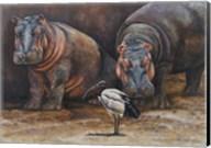 Baby Hippos Fine-Art Print