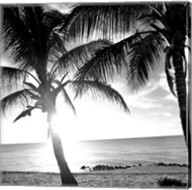 BW Bimini Sunset I Fine-Art Print